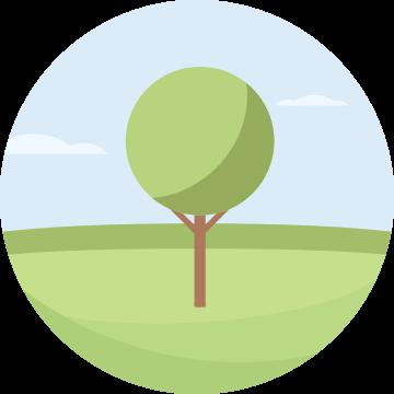 Biomasse: Energie aus der Pflanze